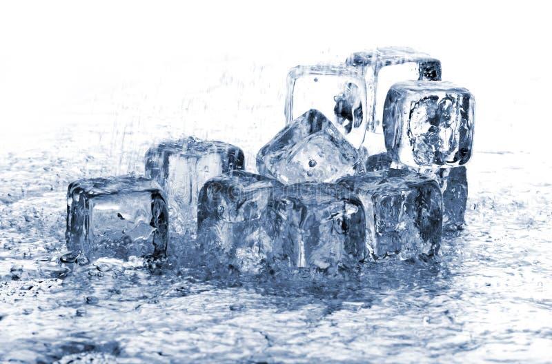 kostki podobszaru ices topnienia deszcz fotografia royalty free