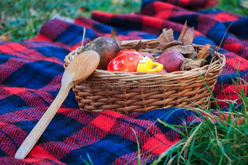 Kosz jabłka na koc Jesień krajobraz Drewniana łyżka zdjęcie royalty free