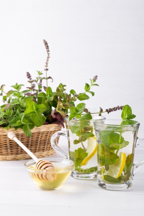 Kosz z świeżą zieleni mennicą i dwa szklanymi filiżankami z świeżej mennicy herbatą fotografia stock