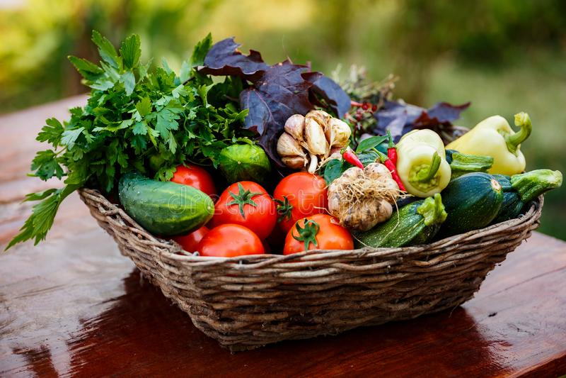 Kosz z świeżymi ecologial warzywami od mój ogródu zdjęcie stock
