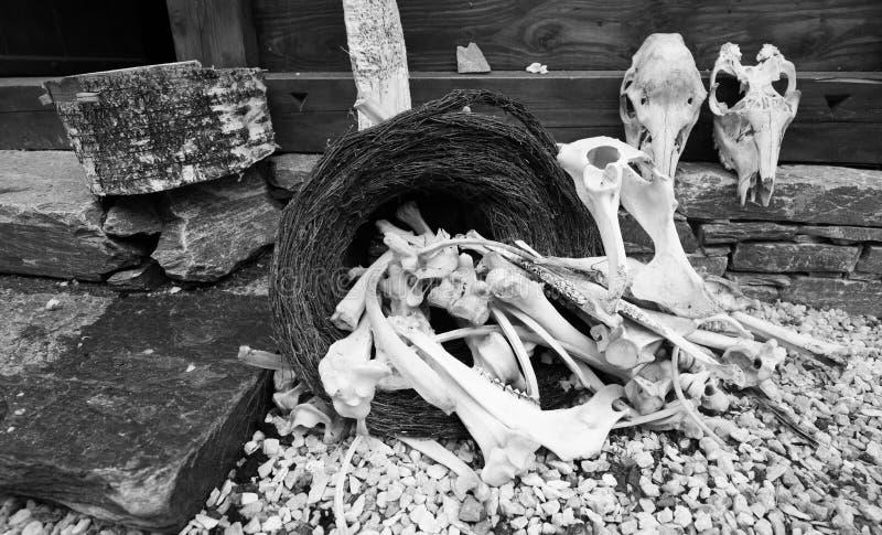 Kosz z kościami i czaszkami na ganeczku blisko domu na kamieniach obraz stock