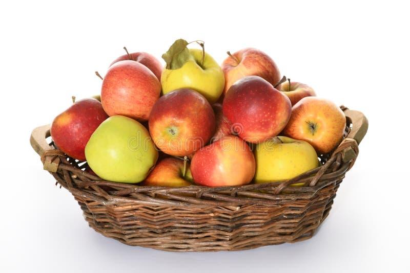 Kosz z kolorowymi jabłkami zdjęcia stock