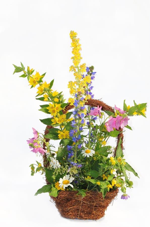 Kosz z mieszanymi dzikimi lato kwiatami zdjęcie stock