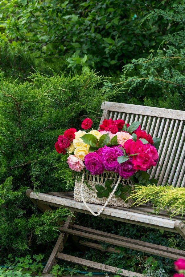 Kosz z różami obraz stock