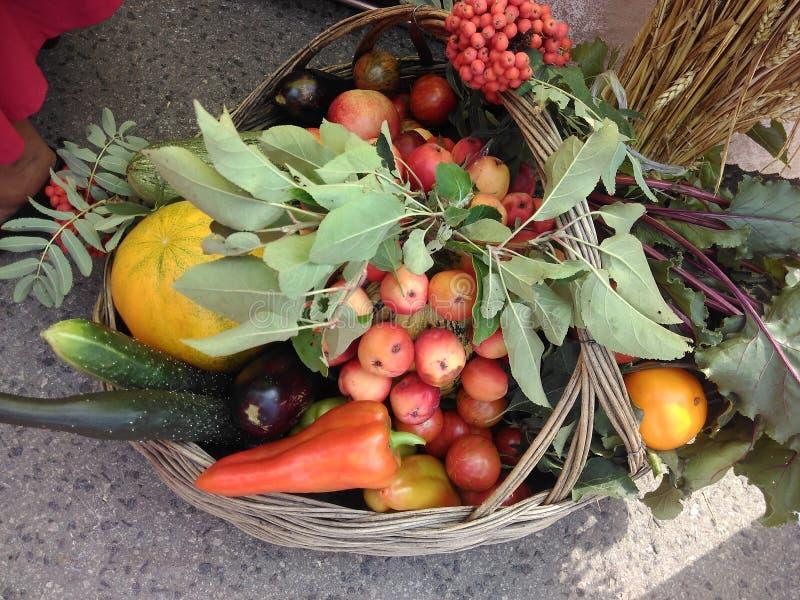 Kosz z warzywami i owoc obrazy royalty free