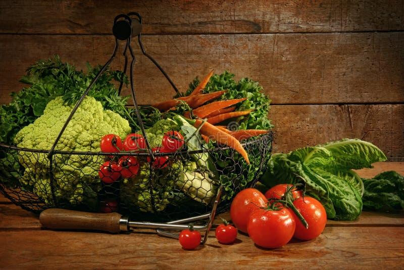 kosza świeżo podnoszący stołowi warzywa zdjęcie royalty free
