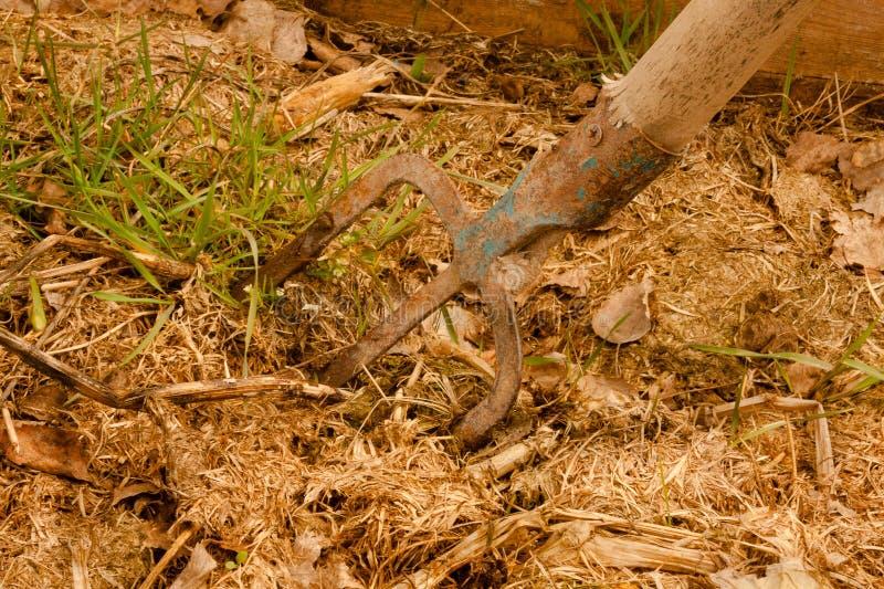 kosza kompost zdjęcie stock
