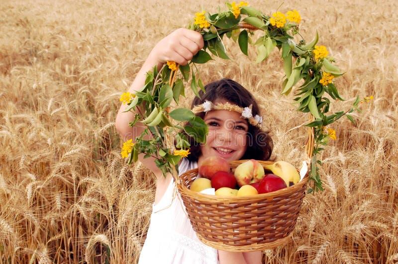 kosza pola owoc dziewczyna trzyma banatki zdjęcie stock