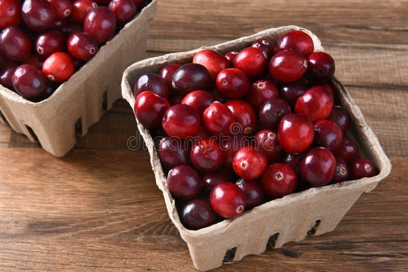 Kosze Świezi Cranberries zdjęcia stock