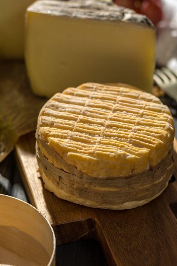 Kosztować stary francuz AOC miękki pudgent żółty serowy Livarot zdjęcia royalty free