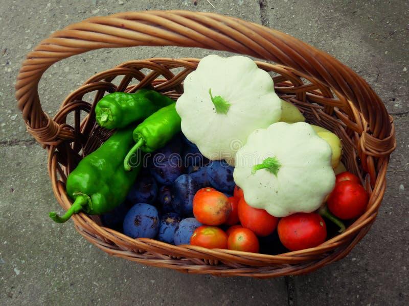 Koszyk owoców i warzyw obrazy stock