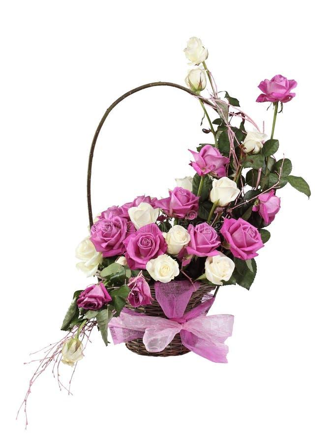 koszykowe stubarwne róże obrazy royalty free