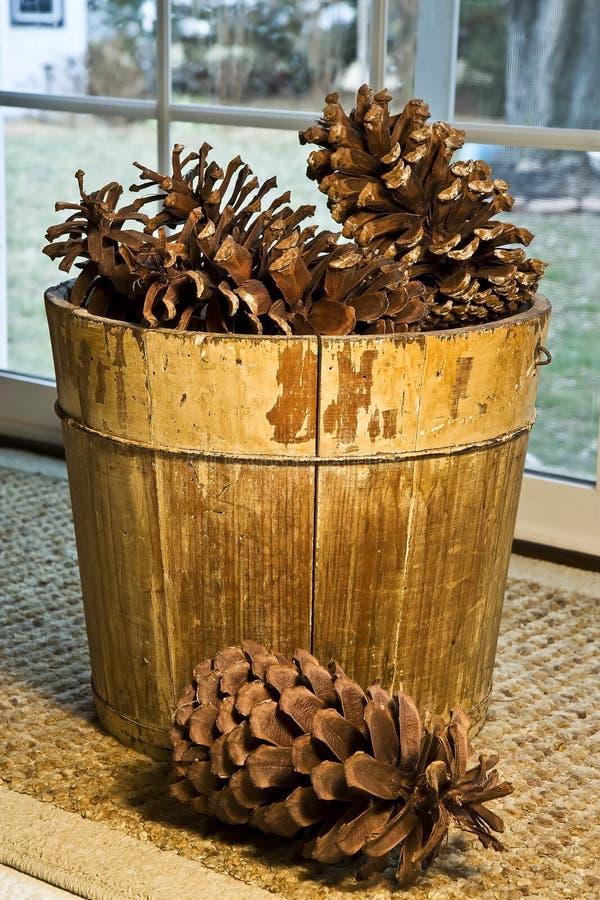 Koszykowi Ogromni Pinecones Zdjęcia Stock