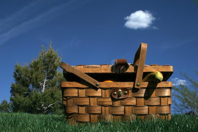 koszykowy piknik zdjęcia royalty free