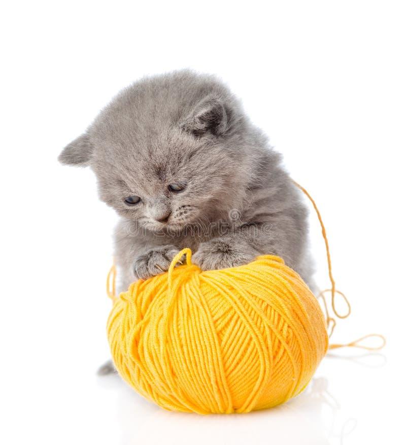 Kot bawić się z piłką wełna pojedynczy białe tło zdjęcie royalty free