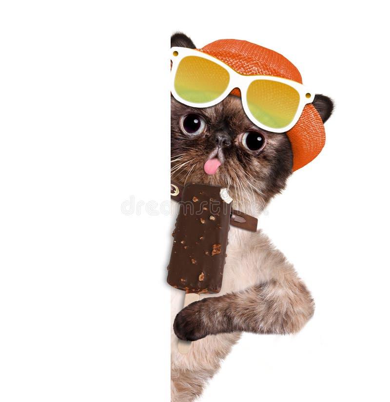 Download Kot je lody obraz stock. Obraz złożonej z joyce, tło - 53787585