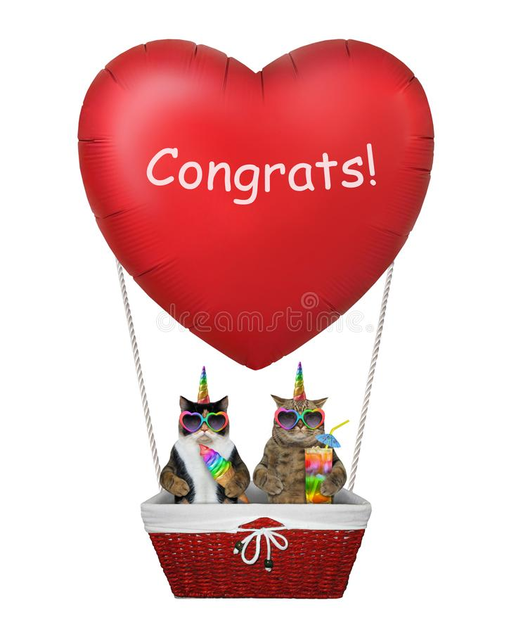 Kot jednorożec w czerwonym serce balonie obrazy royalty free