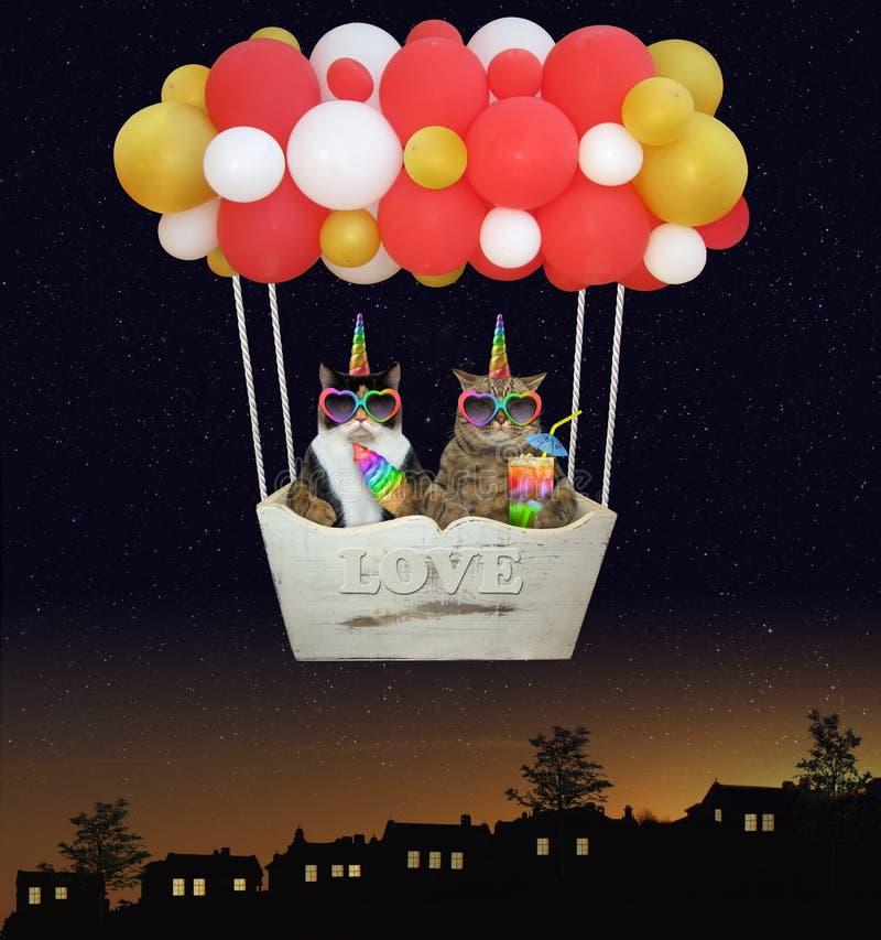 Kot jednorożec w gorące powietrze balonie 2 zdjęcia royalty free