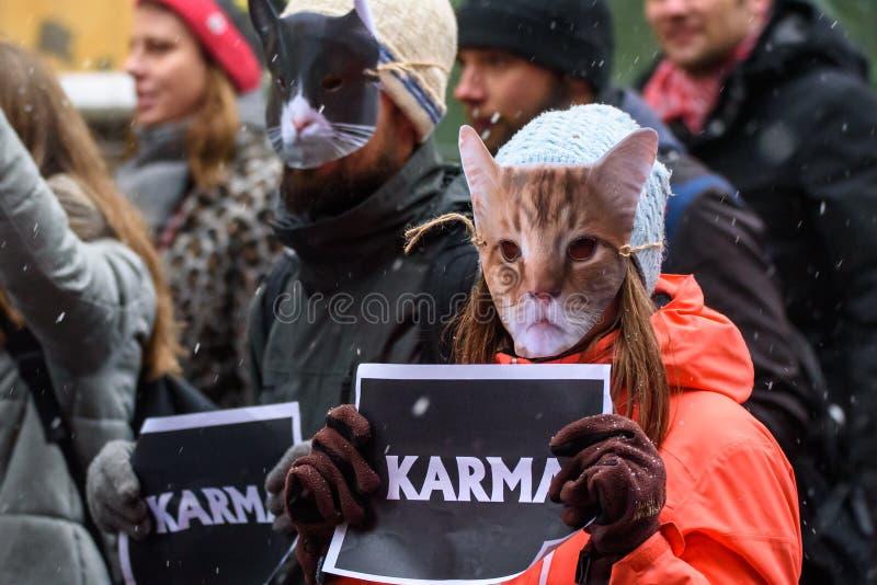 Kot maski na ludziach stawiają czoło z karma znakiem przy rękami, podczas «Marzec dla zwierząt w Ryskim, Latvia fotografia stock