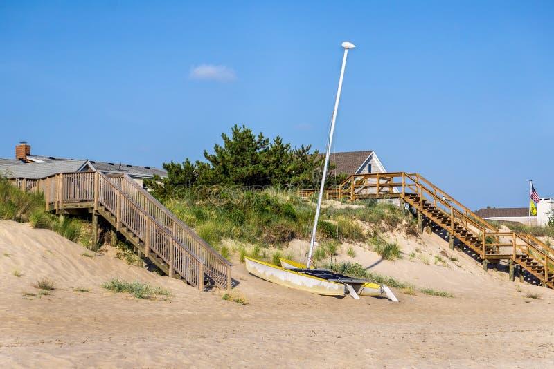 Download Kot na plaży zdjęcie stock. Obraz złożonej z pogodny - 57673890