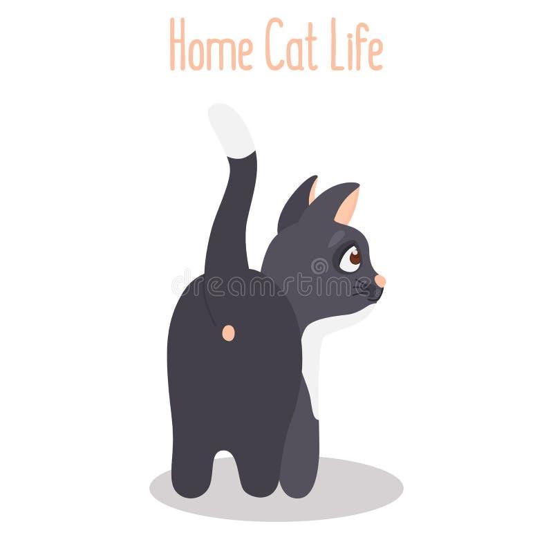 Kot obracający backwards barwi płaską ikonę ilustracji