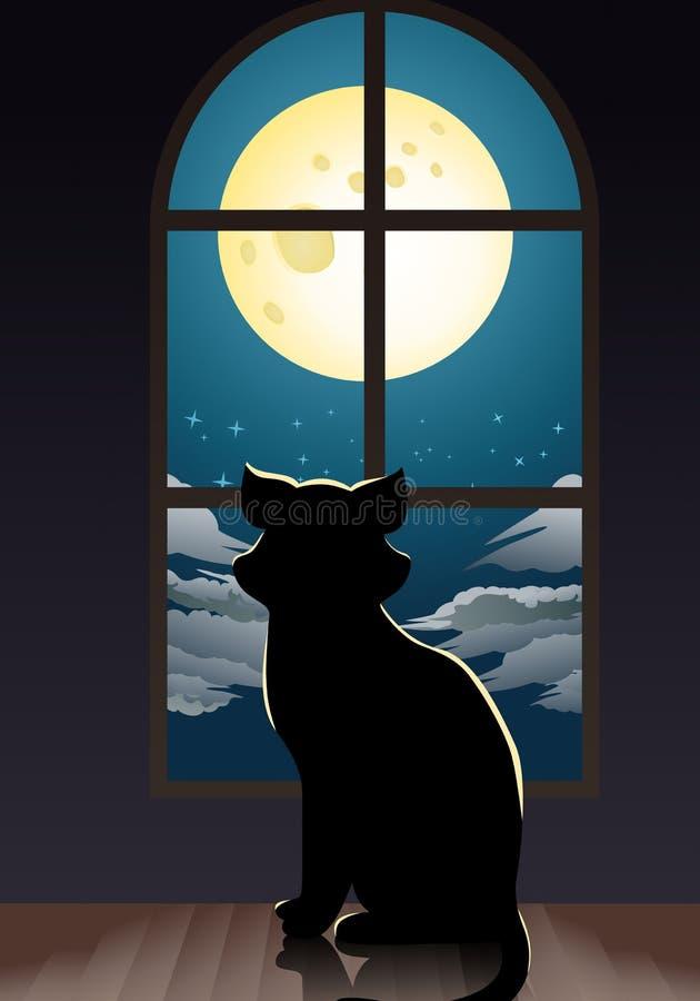Kot osamotniony w domu