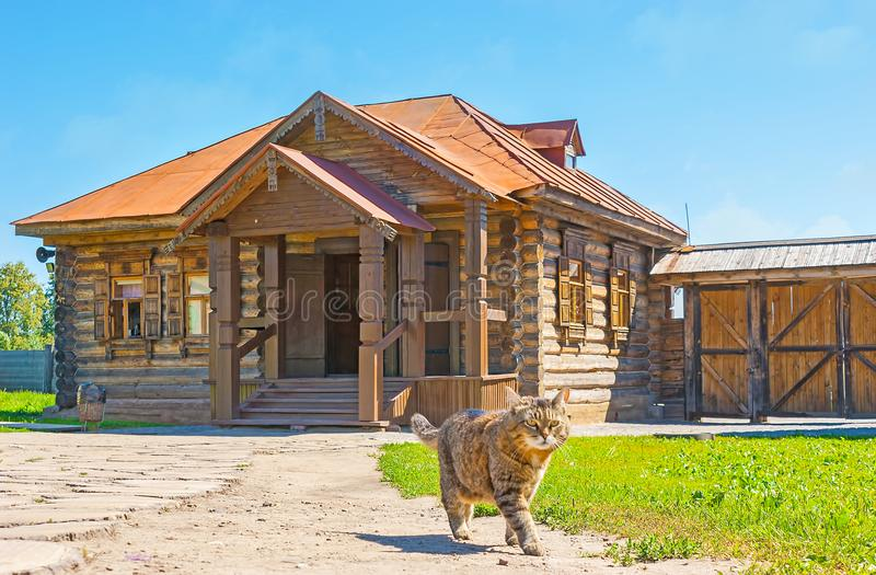 Kot przy drewnianym domem, Suzdal zdjęcie stock