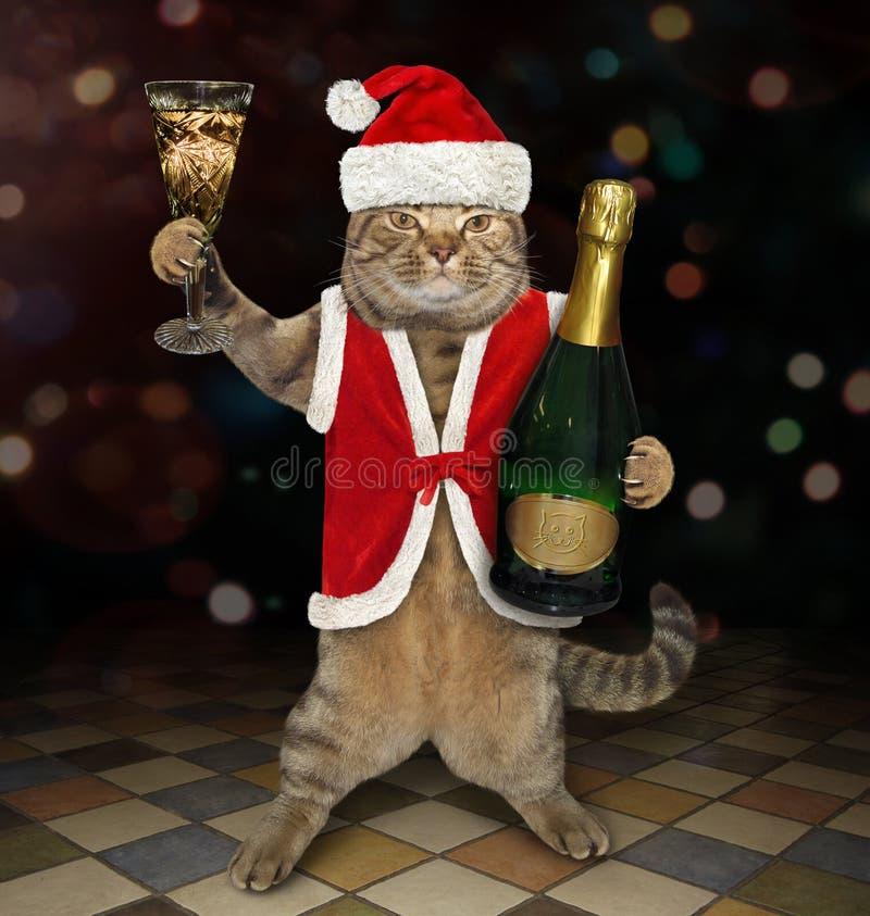 Kot Santa trzyma butelkę wino 2 zdjęcie royalty free