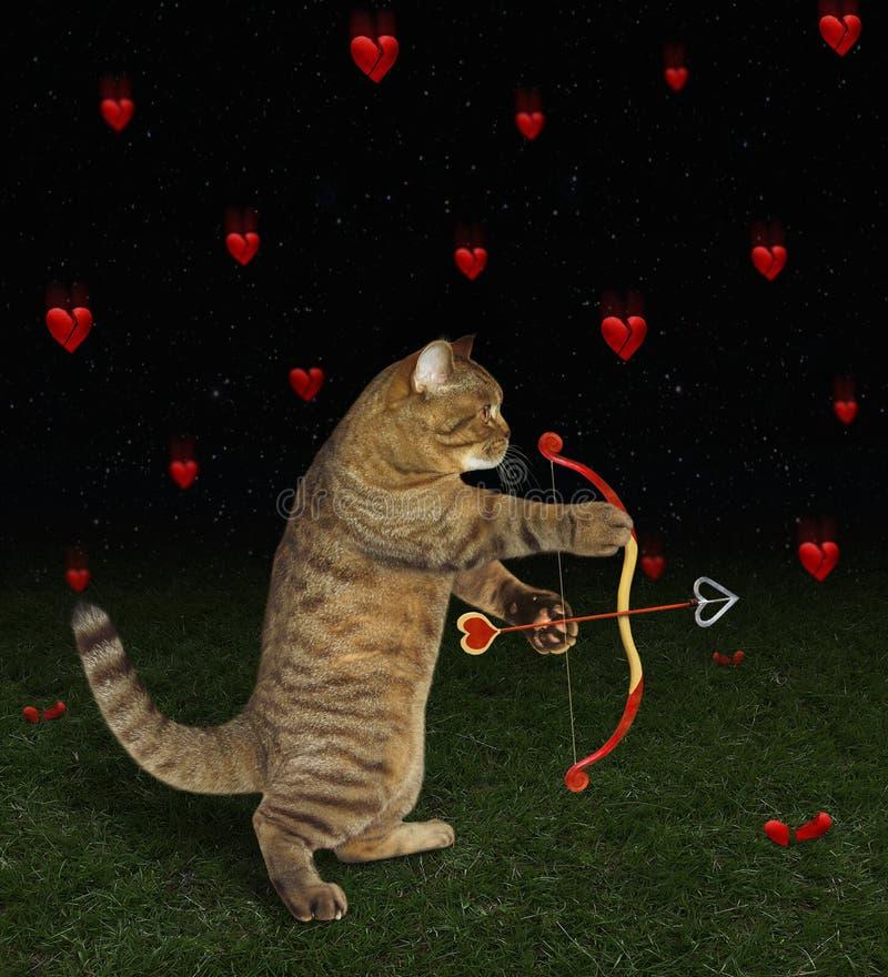 Kot strzela serce 2 z łękiem obrazy stock