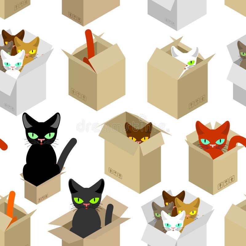 Kot w pudełko wzorze Zwierzę domowe w kartonu tle Wektorowy tekst royalty ilustracja