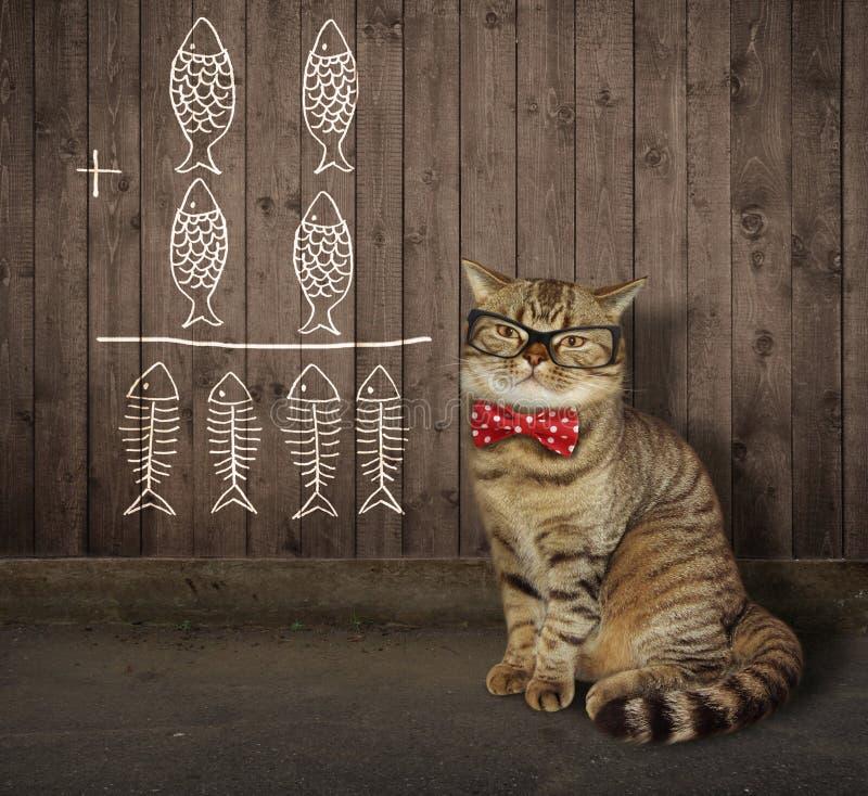 Kot w szkłach blisko ogrodzenia 2 obraz royalty free