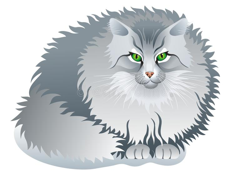 kota grey ilustracja wektor
