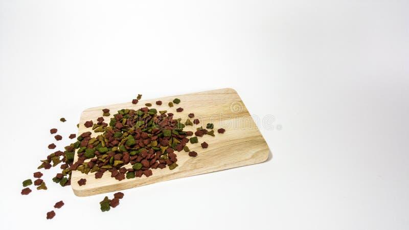 Kota jedzenia odosobnienie zdjęcia stock