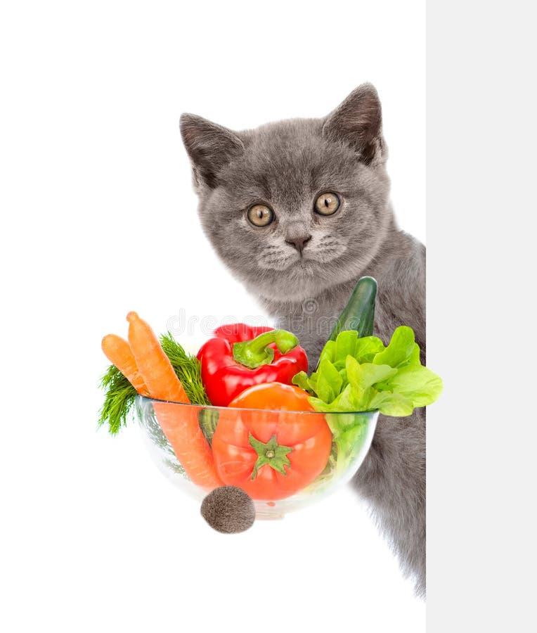 Kota mienia puchar warzywa i zerkanie za od pustej deski pojedynczy bia?e t?o zdjęcie royalty free