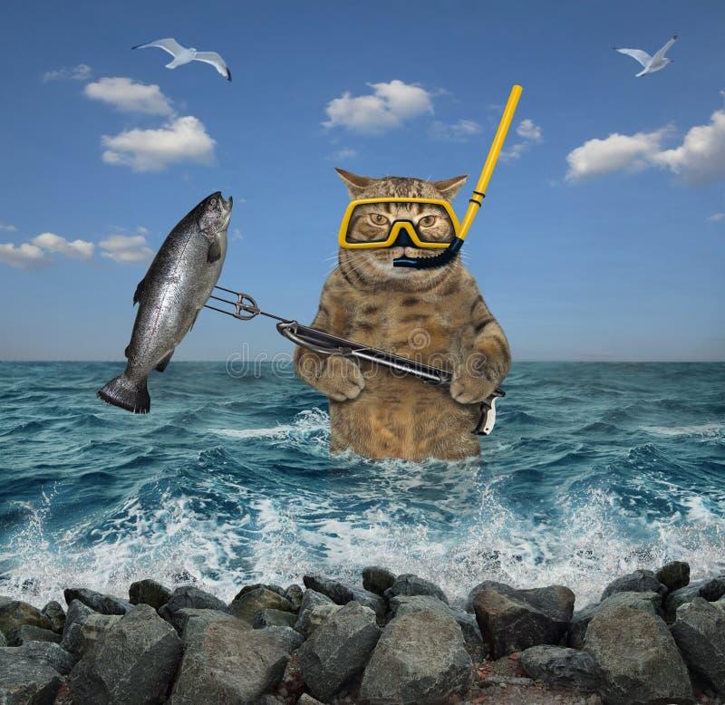 Kota podwodny myśliwy z speargun 2 obrazy royalty free