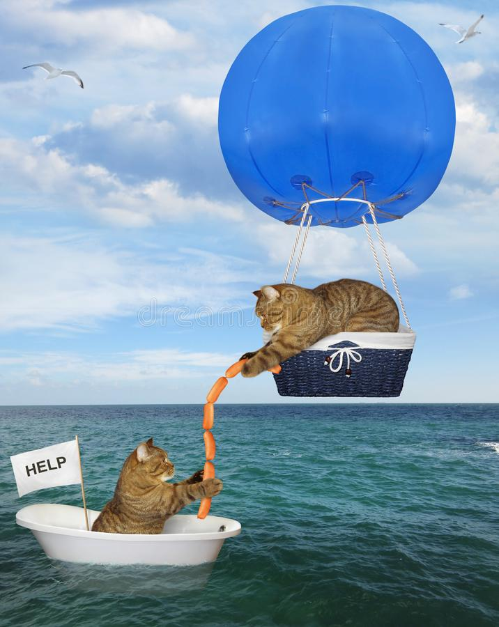 Kota ratownik w błękitnym gorące powietrze balonie 2 fotografia royalty free