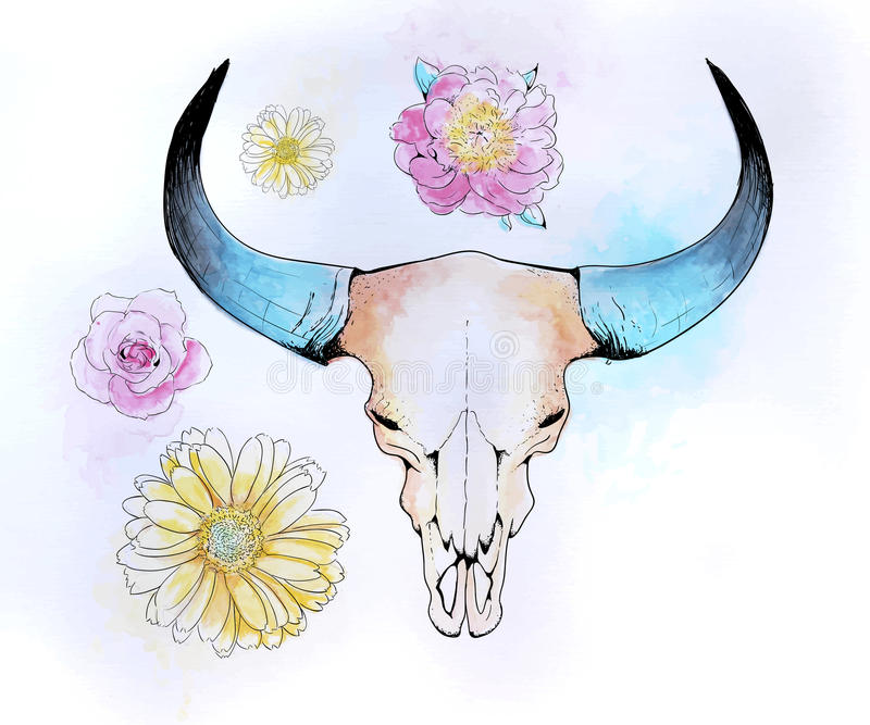 Kotjurskalle royaltyfri illustrationer