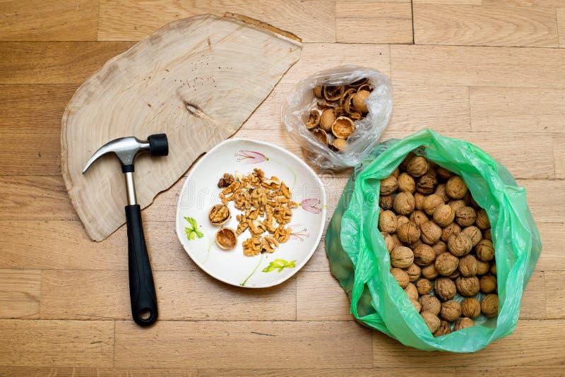 Kotlettvalnötter med en hammare royaltyfri bild