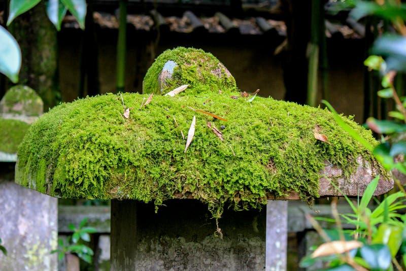Kotoin tempel i hösten (nordliga Kyoto, Japan) arkivbilder