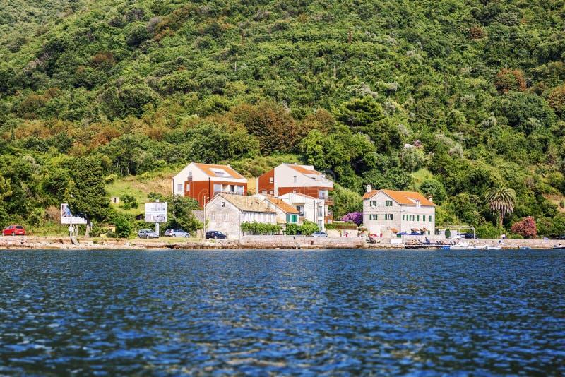 Kotor Montenegro, 07 26 2016 H?rliga gamla stenar hus i fj?rden p? bakgrunden av gr?n vegetation royaltyfria foton