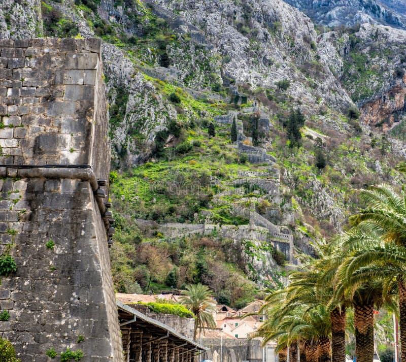 Kotor väggar Montenegro arkivbild