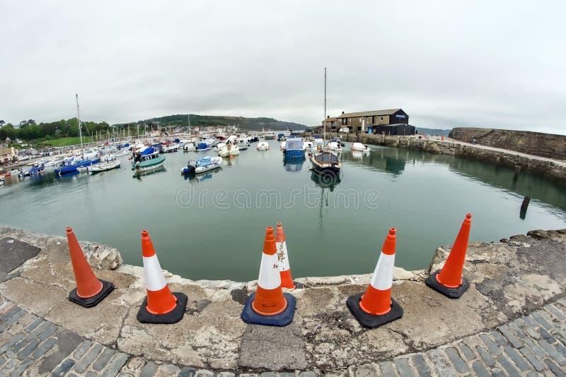 Kottar på Lyme Regis Harbour arkivbild