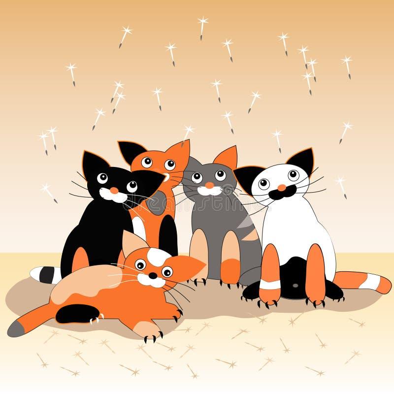 Koty 5 ilustracji