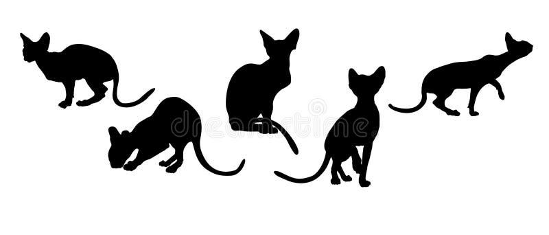 koty royalty ilustracja