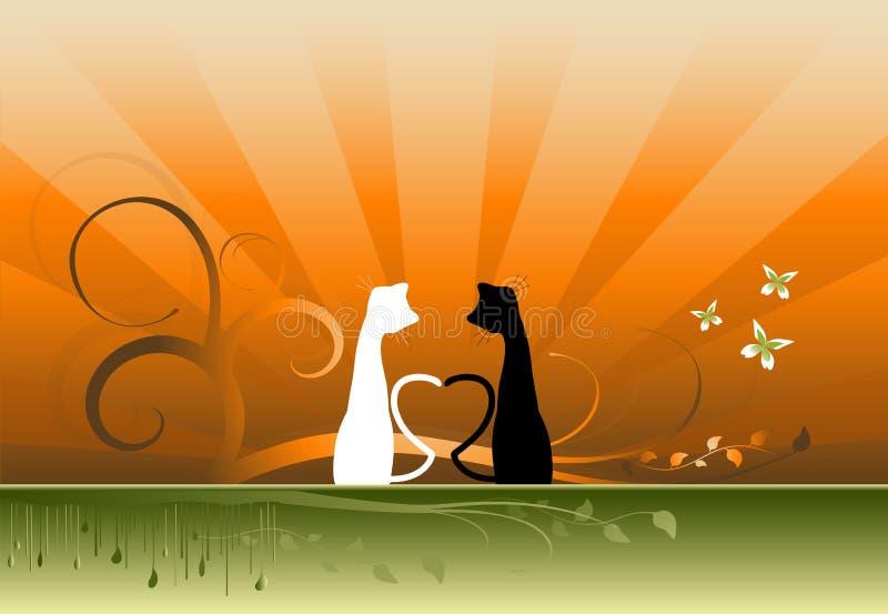 koty ilustracyjni ilustracji