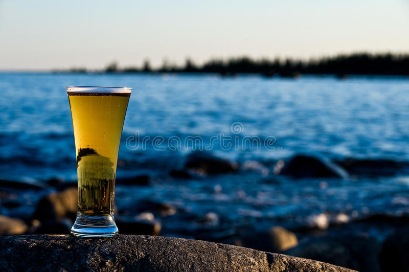 Koud bier royalty-vrije stock foto
