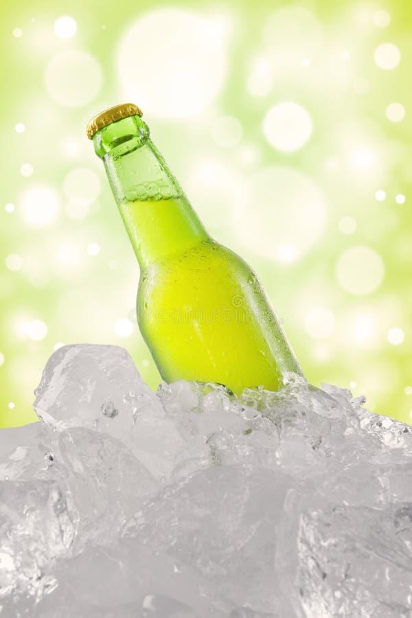 Koud bier in de fles en het ijsblokje stock foto's