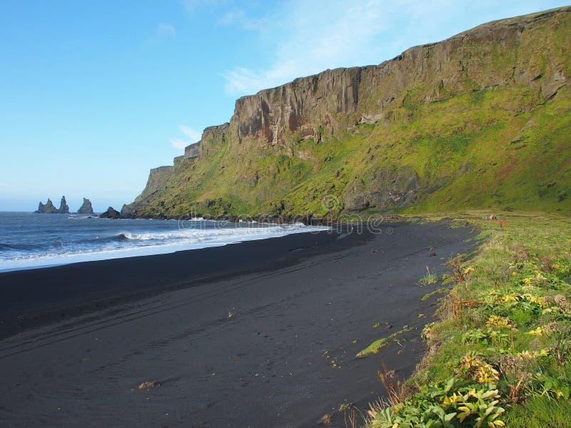 Koud IJsland! royalty-vrije stock foto