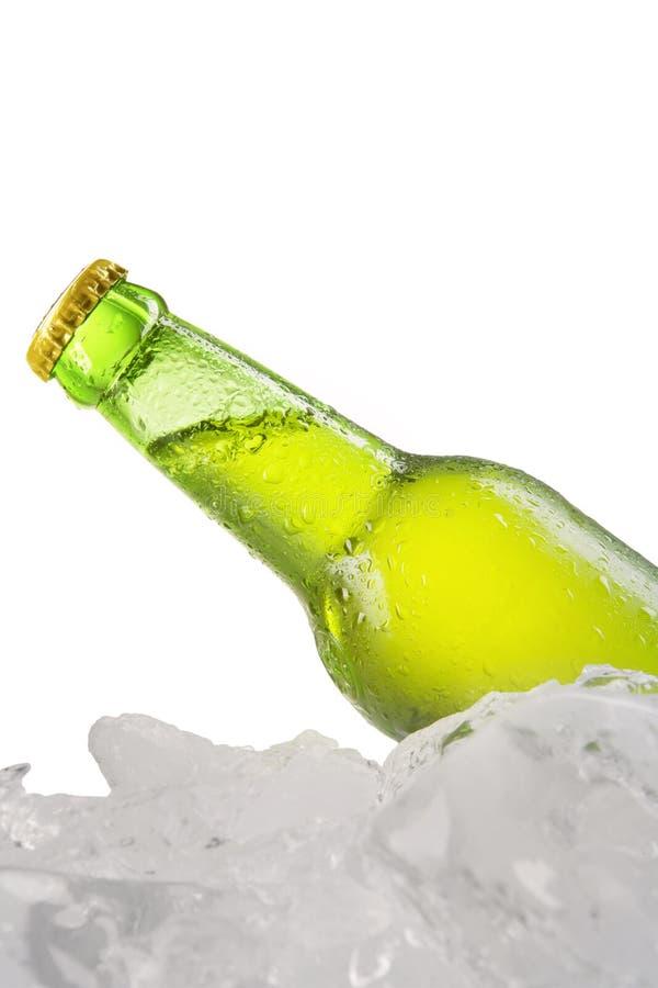 Koud lagerbier met dauw op de fles stock foto