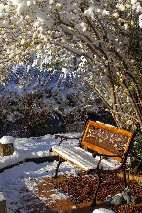 Koud Seat in koude wereld royalty-vrije stock foto's